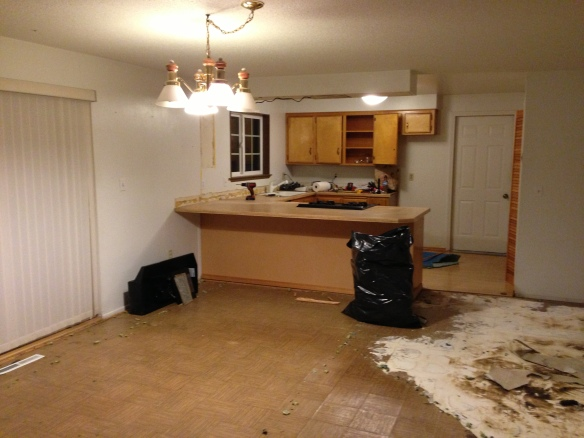 Kitchen mid-demo